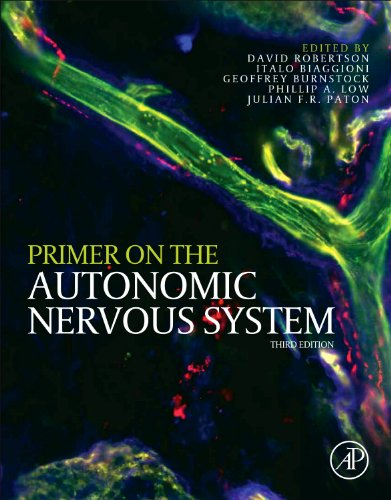 Primer on the Autonomic Nervous System von Elsevier Science Publishing Co Inc