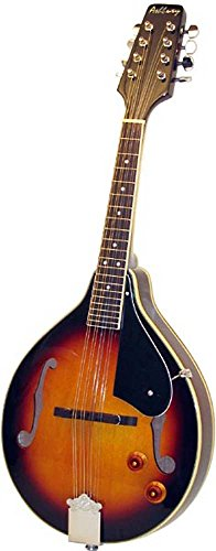 Ashbury AM-10 Mandoline Sunburst von Ashbury