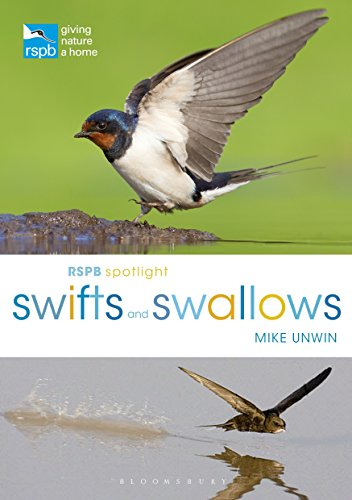 RSPB Spotlight Swifts and Swallows von Bloomsbury Wildlife