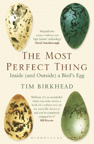 The Most Perfect Thing: Inside (and Outside) a Bird's Egg von Bloomsbury Publishing PLC