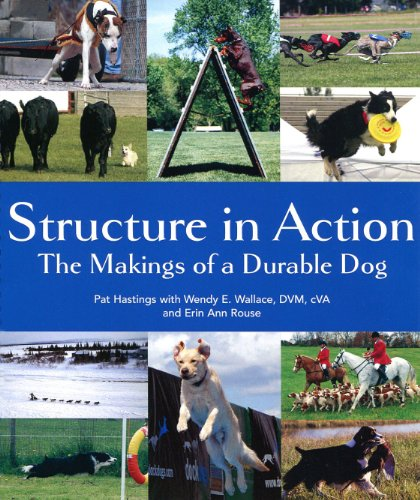 Structure in Action von Dogfolk Enterprises