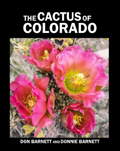 The Cactus of Colorado von Donald J Barnett jr.