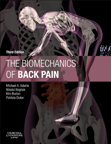 The Biomechanics of Back Pain von Elsevier LTD, Oxford