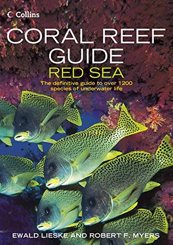 Coral Reef Guide Red Sea: Red Sea to Gulf of Aden, South Oman von Harpercollins Publishers