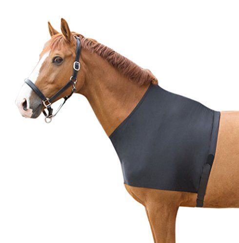 Harry's Horse 32208005-xl Brustdecke Lycra, XL von Harry's Horse