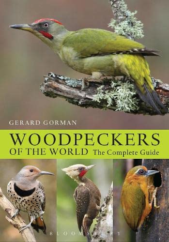 Woodpeckers of the World: The Complete Guide (Helm Photographic Guides) von Bloomsbury Publishing PLC