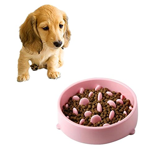 HongGXD Pet Paint Bowl Pet Bowl Verhindern Würgen PP Materia Bowl (Color : Pink) von HongGXD