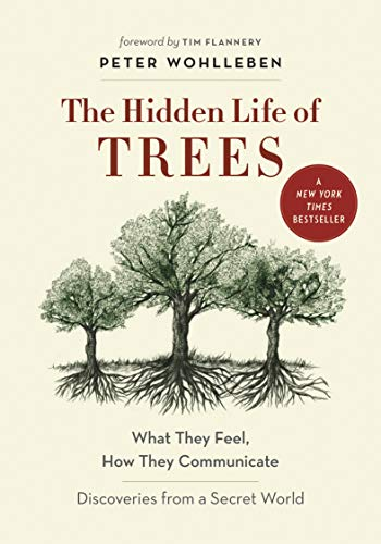 The Hidden Life of Trees: What They Feel, How They Communicate—Discoveries from a Secret World von Greystone Books,Canada