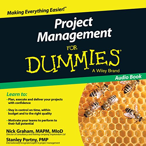 Project Management for Dummies: UK Edition von John Wiley & Sons, Ltd