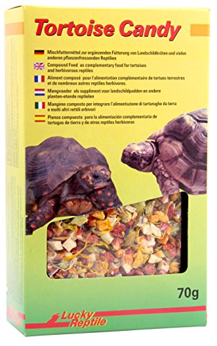 Lucky Reptile Tortoise Candy 70 g, 1er Pack (1 x 70 g) von Lucky Reptile