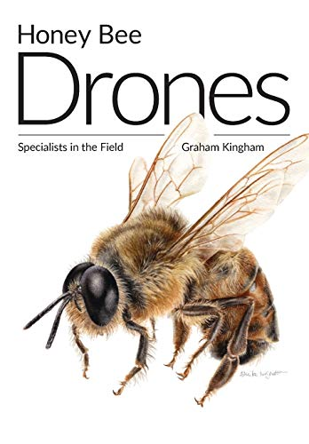 Honey Bee Drones: Specialists in the Field von Northern Bee Books