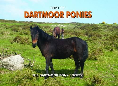 Spirit of Dartmoor Ponies von Pixz Books