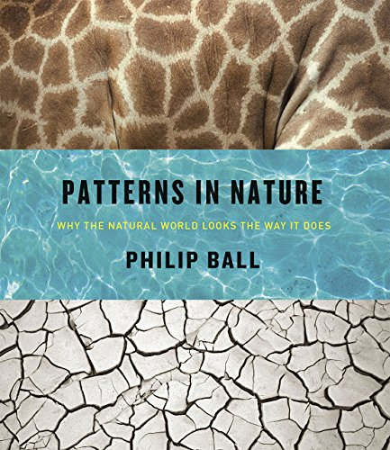 Patterns in Nature: Why the Natural World Looks the Way It Does von The University of Chicago Press