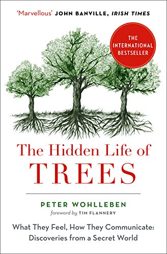 The Hidden Life of Trees: What They Feel, How They Communicate von Harpercollins Uk; William Collins