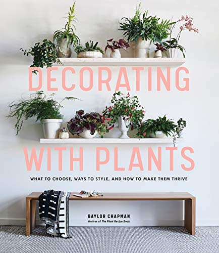 Decorating with Plants: What to Choose, Ways to Style, and How to Make Them Thrive von Artisan