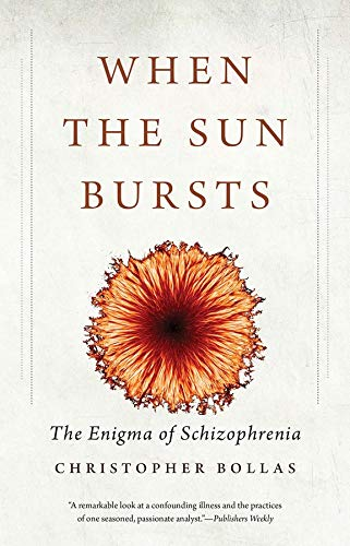 When the Sun Bursts: The Enigma of Schizophrenia von Yale University Press
