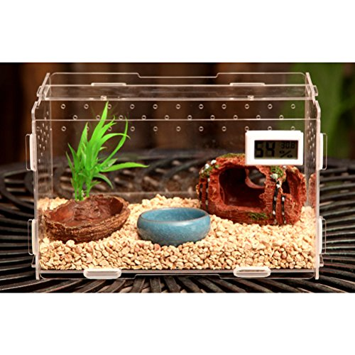 Zhhlaixing Haustierzubehör Transparent Pets Amphibian Spider Habitat Cage Set Carry House with Cover von Zhhlaixing